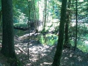 Funkloch bei Raubach (Odenwald)