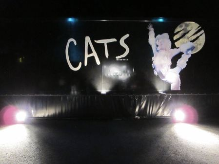 Cats Truck in Zürich